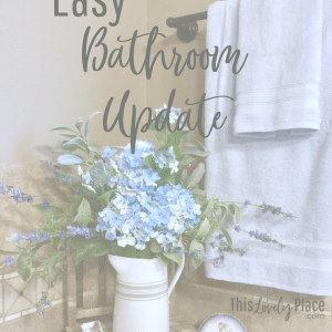 Easy Bathroom Update